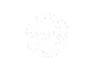 icona www